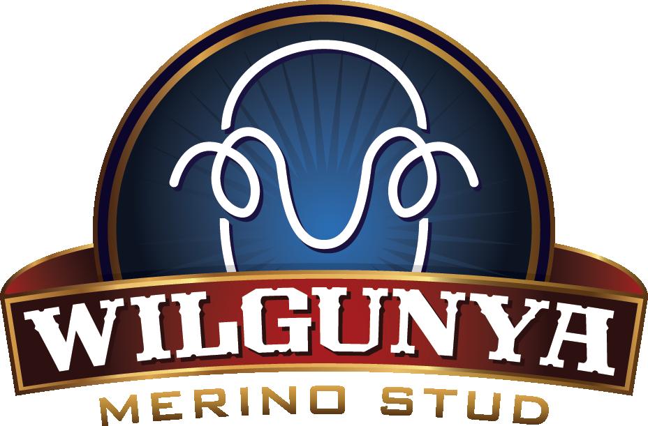 Wilgunya Merino Stud